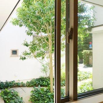 【下階】洗面台小窓からの景色。共用部になります。
