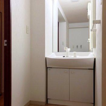 大きな鏡の洗面台。朝の支度もラクラク!向かいに洗濯機置場があります。