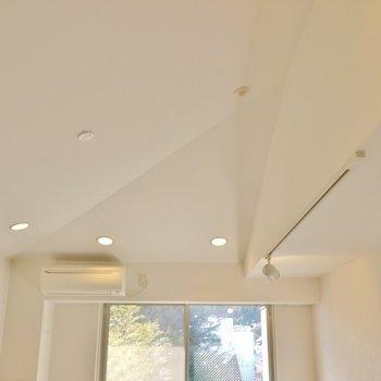 勾配天井の視線の抜ける感じが好きです!※写真は同タイプの別室