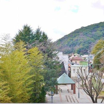 都会の中で緑が眺めれる素敵な眺め。※写真は同タイプの別室