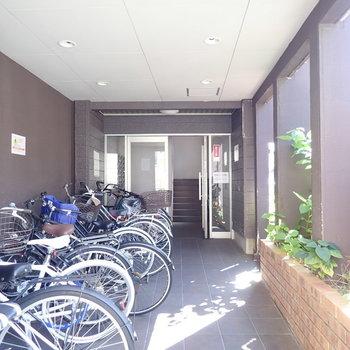 自転車はこちら。