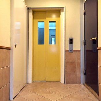 エレベーターはからし色!元気になれます。