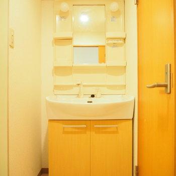 大容量の独立洗面台です