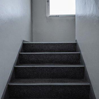 階段は屋内で窓があります。2人横並びで通ることができます。