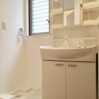 洗面台と洗濯パンはお隣同士。