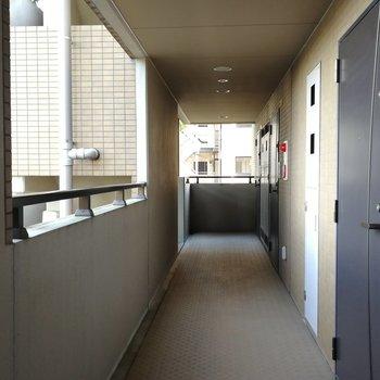 玄関前の共用部。左手には神社の境内が見えますよ