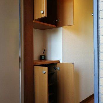 上と下に収納できます。間にグリーンを置くのも良さそう※写真は7階の同間取り別部屋のものです