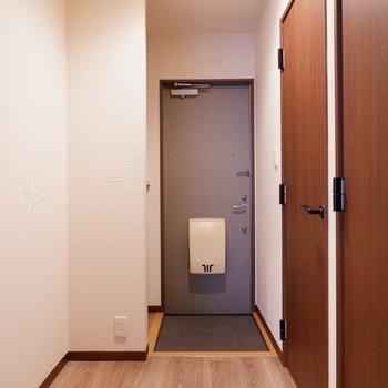 玄関スペースゆったりです。コンセントもあるので照明など置きたいですね。