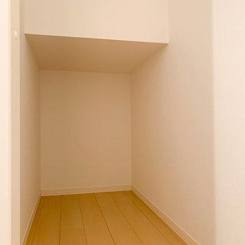 階段下を利用した、奥行きのある収納があります。