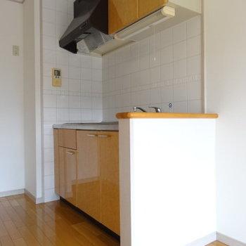 ピカピカのシステムキッチン。奥の壁付けで冷蔵庫置きたい。