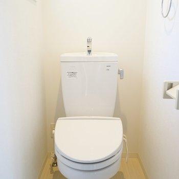 ここも白い。必要十分なトイレ。