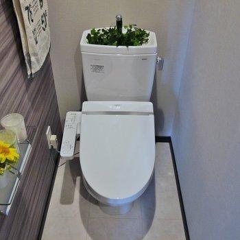 トイレはシンプル!※写真は前回募集時のもの