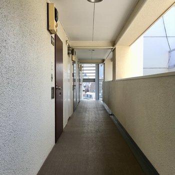 キレイな共用廊下。