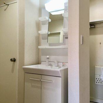 独立洗面台はシャワーノズル付き。