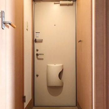 玄関は少しコンパクト。左側の扉がトイレです。(※写真は清掃前のものです)