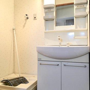 洗面台はゆったりシャンプードレッサー。(※写真は3階の同間取り別部屋のものです)