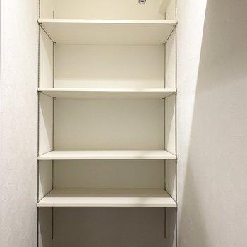 左側は可動棚。棚受けレール付でフレキシブルな使い方ができます。