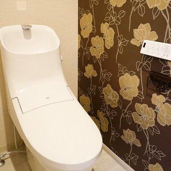 最近よく見るクールな形のトイレ。…って壁!!!