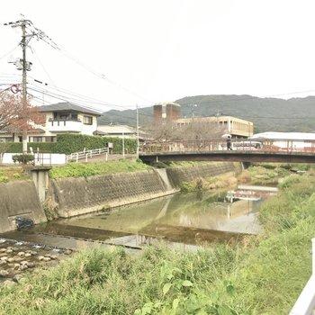 マンション横には大きな川があります。大宰府の町並み、好きだなぁ。