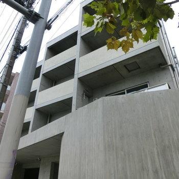 引き締まったコンクリート壁の外観