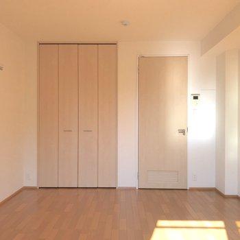 お部屋の収納はこちらの一箇所になります。