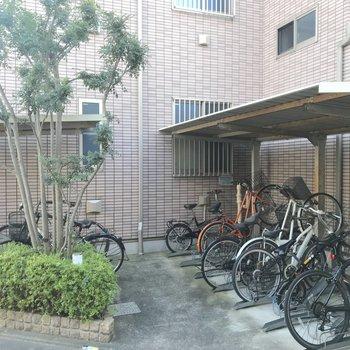 駐輪場はラック式です。
