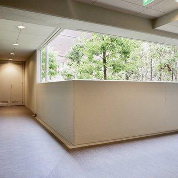 共用部廊下から緑が見えるのもいいですね。
