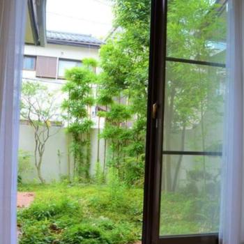 庭を整えて日本庭園風にしてみてもよさそうだ