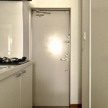 扉、表側は茶色です。※フラッシュを使用しています