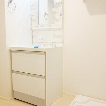 洗面所と洗濯機置場がセットなのは評価点高いね。