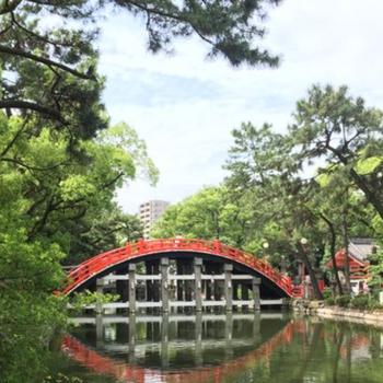周辺】自転車で一足伸ばせば、大阪代表の神社、住吉大社!