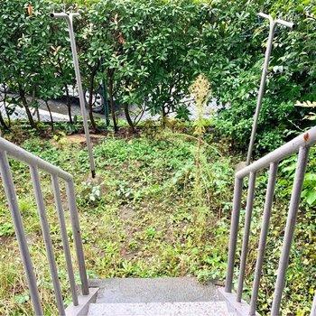 ステップ降りれば広がるマイ・ガーデン!