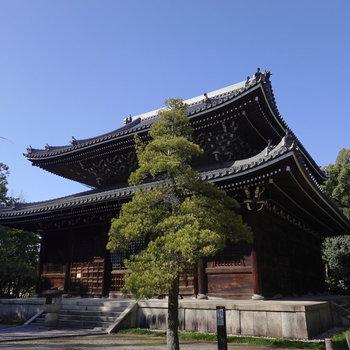 近くには駅名の由来となった妙興寺があります。とても良い景色が見れるんです。