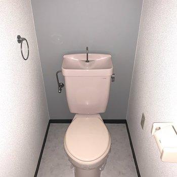 おトイレは独立空間。※フラッシュ撮影です