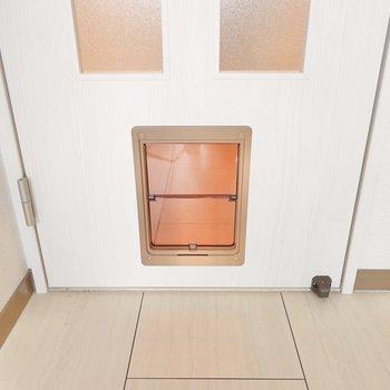 リビングと廊下と洋室のドアには猫ちゃんワンちゃんのドアが!