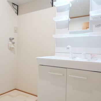 脱衣所内には、清潔感のある洗面台と洗濯パンが隣り合っています。