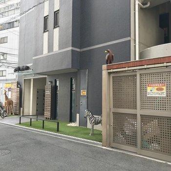 【共用部】動物たちが集まる入り口。自転車とゴミ置き場もこちらに。