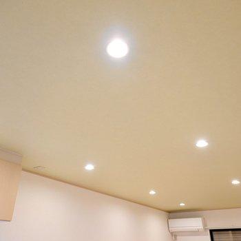 ライムグリーンの天井にはダウンライトが8つ。