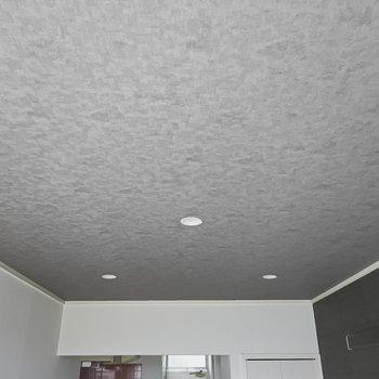 天井照明はダウンライト。点ければお部屋を明るく温かく照らしてくれるはず。