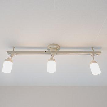 照明はダクトレールについたスポットライト。自然な明るさの昼白色で良い雰囲気。