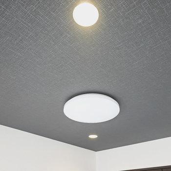 照明はシーリングライトにダウンライト。明るさと雰囲気の調節ができますね。