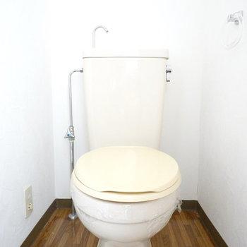 トイレ自体はシンプルなものですが、床材の表情が良い味出してます。