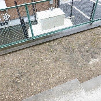 1階の窓外には庭が!!! ここで植物を育てるのもいいなぁ。
