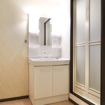 お次は脱衣所。入って正面に洗面台。その右にお風呂があります。