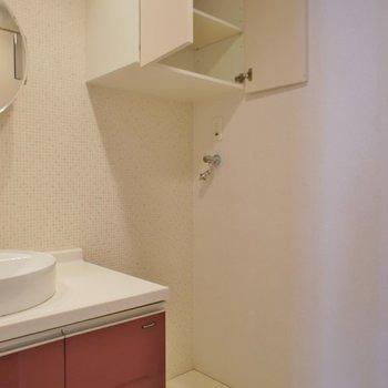 隣は洗濯置場、上の棚は助かります