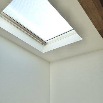 天窓があるって素晴らしい! ※逆光で少し暗くなっています。