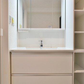 子供たちと一緒に歯磨きできる大きな洗面※写真は同タイプの別室。