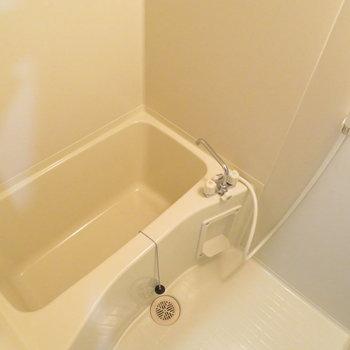 お風呂も綺麗ですね(※写真は5階の反転間取り別部屋のものです)