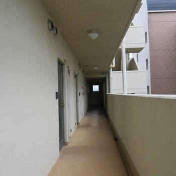 廊下も綺麗ですね