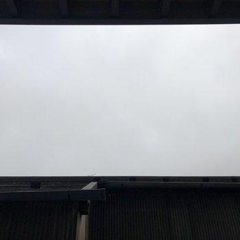 上に視線を向けると空も見えましたよ。